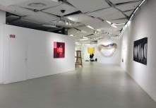 Visuel The Galerie des Galeries