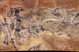 Vignette projet Des lions et des hommes